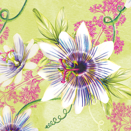 Surface Pattern passionflower and valerian floral botanical