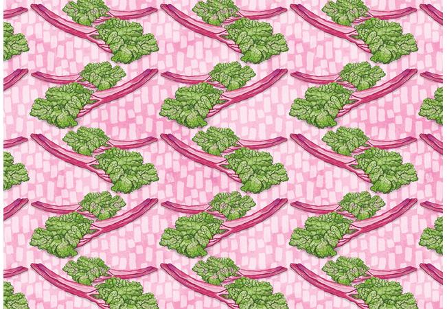 Rhubarb Food Pattern Surface Pattern