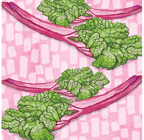 Rhubarb Food Pattern