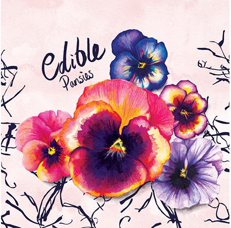 food-illustration-edible-pansies