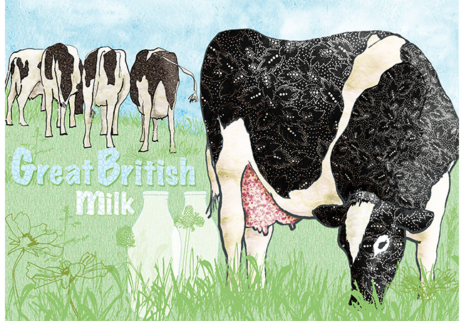 Food Illustration Great british milk Cows