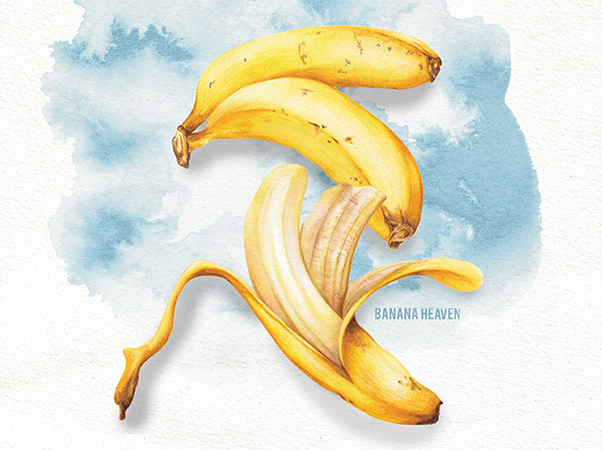 Food illustration Banana Heaven