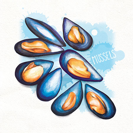 Food illustrationMussels