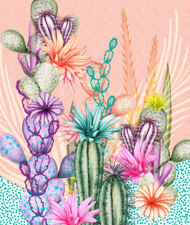 Nature-illustration-botanicals-cactus-desert-tropical