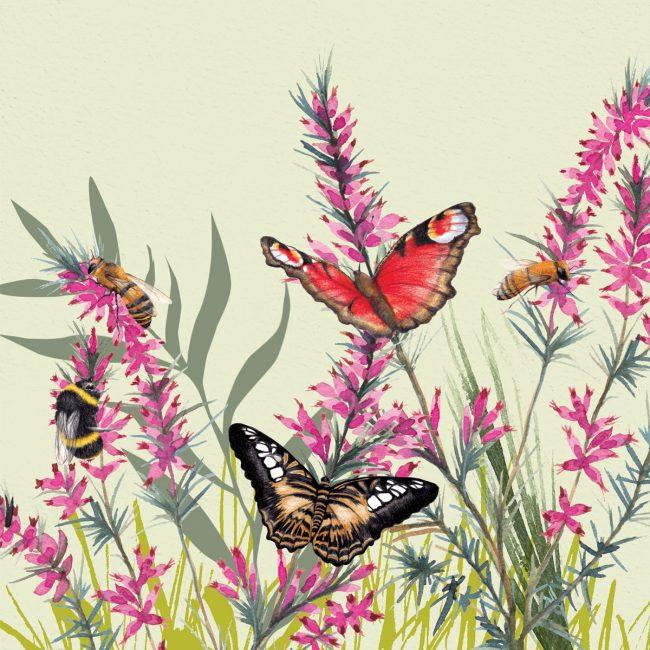 Nature-illustration-butterflies-bess-and-flowers-wildlife-garden
