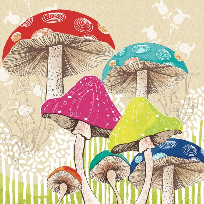 Nature-mushrooms-woodland