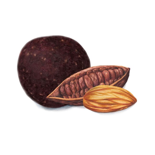 food-illustration-packaging-design-cacao-and-almond-energyball-Deliciously-Ella