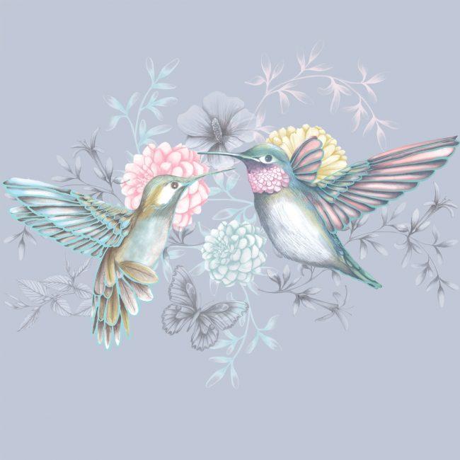hummingbirds-illustration-garden-nature-flowers