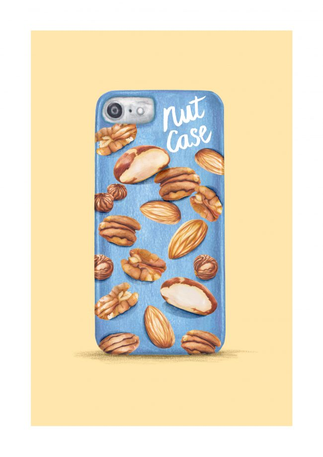 food-illustration-food-pun-nuts nutty nut case quirky eccentric