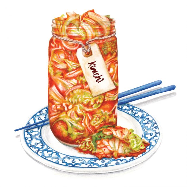 food-illustration-kimchi-probiotic-gut-health food-illustration-kimchi-probiotic-gut-health
