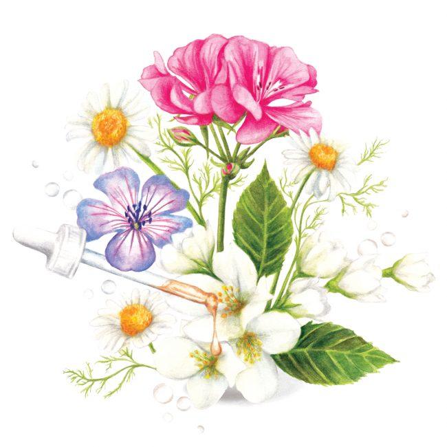 Watercolour flowers botanical beauty natural skincare