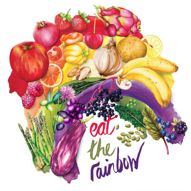 watercolour food illustration Eat the Rainbow healthy eating