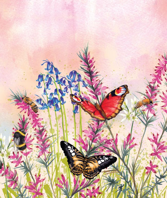 watercolour nature illustration Wild Meadows butterflies and bees