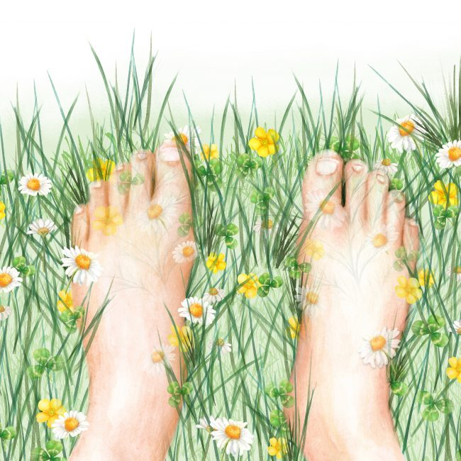 Healthy lifestyle illustration earthing holistic health