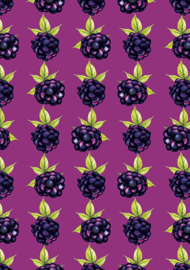 watercolour food pattern blackberries print