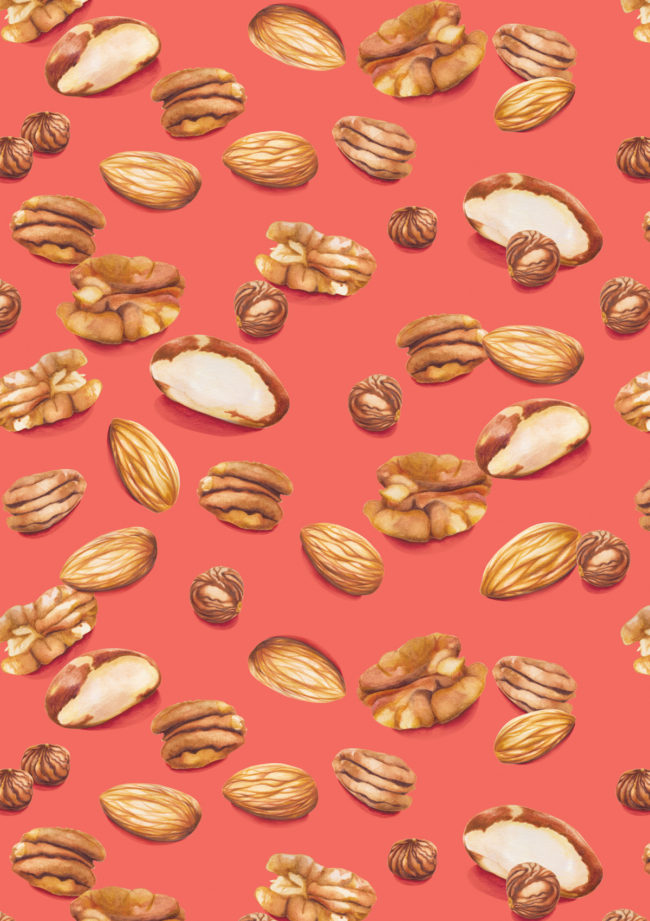 nuts food illustration pattern healthy snacks good fats living coral