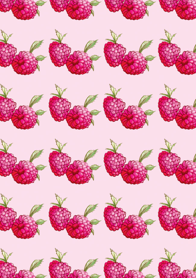 watercolour food illustration and patterns raspberry print