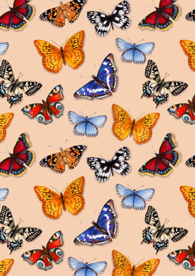 watercolour butterfly pattern wildlife gardens