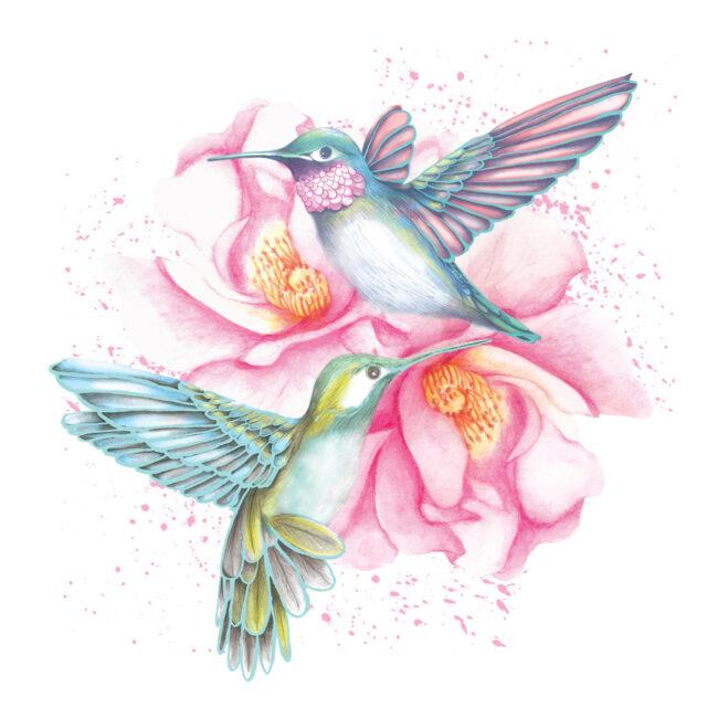 Hummingbirds watercolour artwork animal botanical nature illustration
